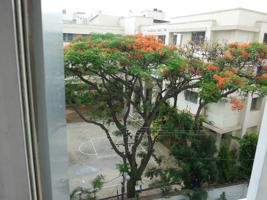 Ocea International Hotel: Lovely view