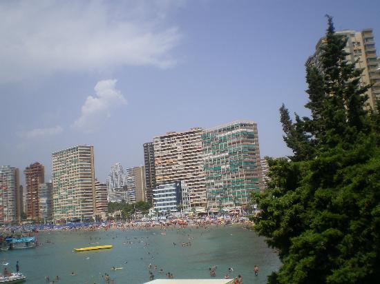 Hotel Lido: vista dede la piscina