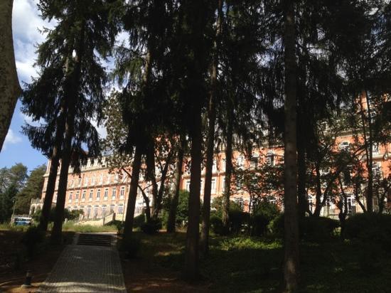Vidago Palace Hotel: vegetação envolvente