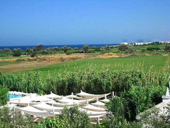Masseria Cimino: Vue de la terrasse sur mer et piscine
