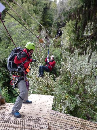 Rotorua Canopy Tours: getlstd_property_photo