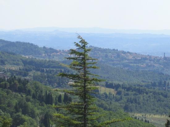 Villa Palagio Vecchio B&B: Panorama Fiesole da B&B - Fiesole view from B&B