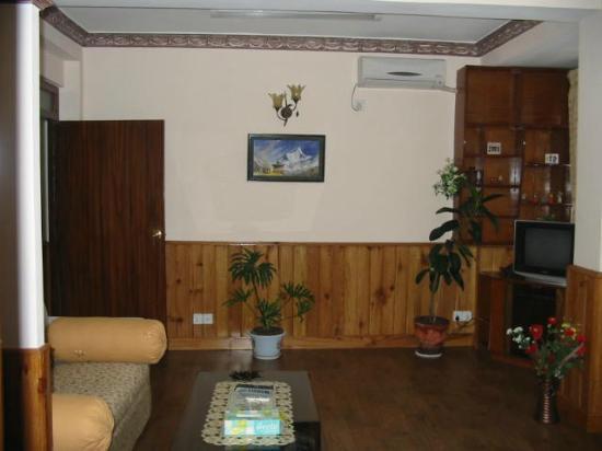 Thamel Apartments/Hotel: Luxurious Apt - view