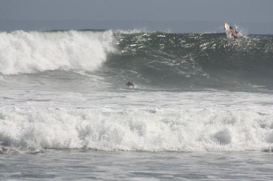 Puri Dajuma Cottages: surfing