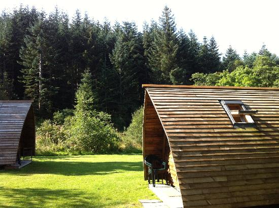 Acharn Farm Wigwams: he two wigwams with forest in background
