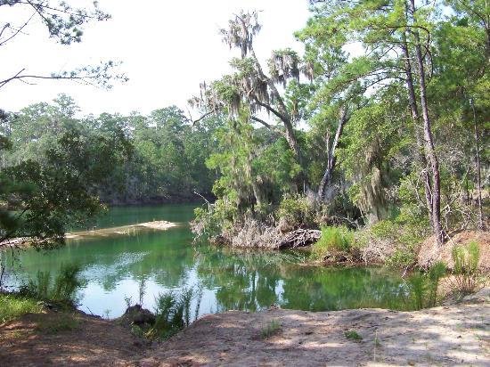 Sapelo Island National Estuarine Research Reserve: lagoon