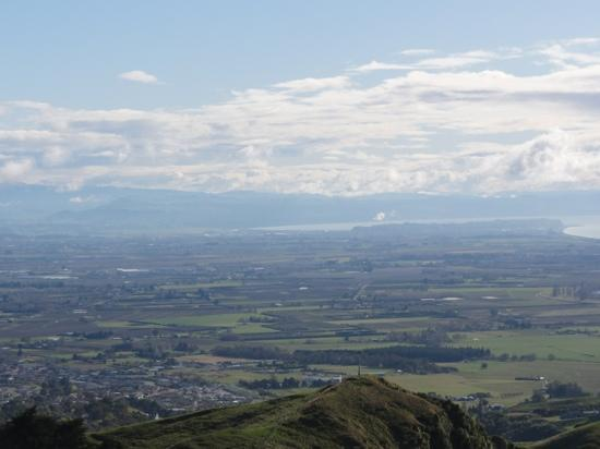 Waimangu Volcanic Valley : amazing view from te mata peak