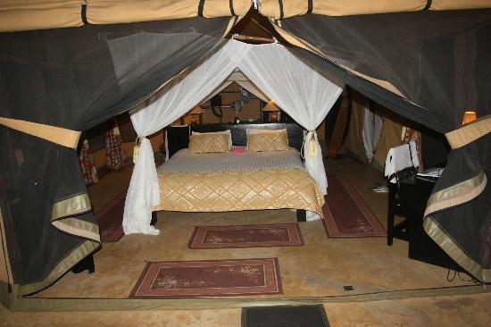 Mara Timbo Camp: little view of the room 