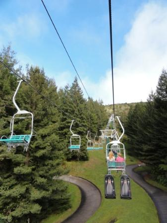 Skyline Rotorua The Luge Chairlift