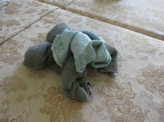 Apollo Studios: Bassett towel