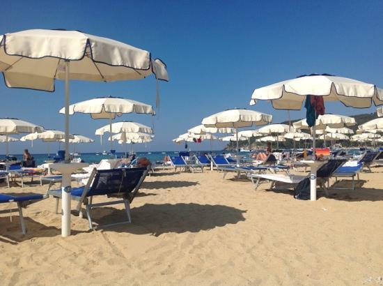 Procchio, Italia: spiaggia e ombrelloni