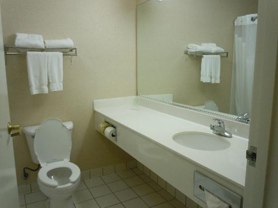 Holiday Inn Express Irondequoit: propre et fonctionelle