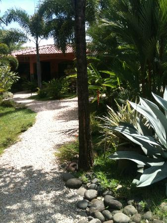 Hotelito Si Si Si: Walking up to our room! Beautiful!