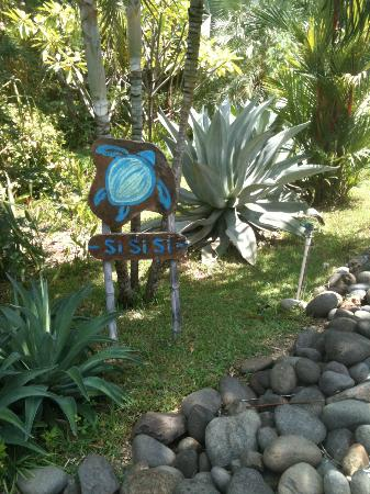 Hotelito Si Si Si: Sign for SiSiSi in front of walking path.