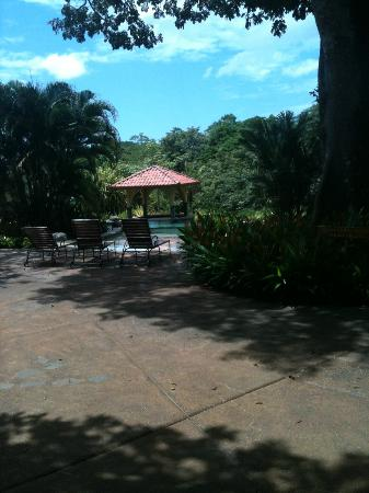 Hotelito Si Si Si : Club Arbol within Tierra Pacifica offers guests incredible pool!