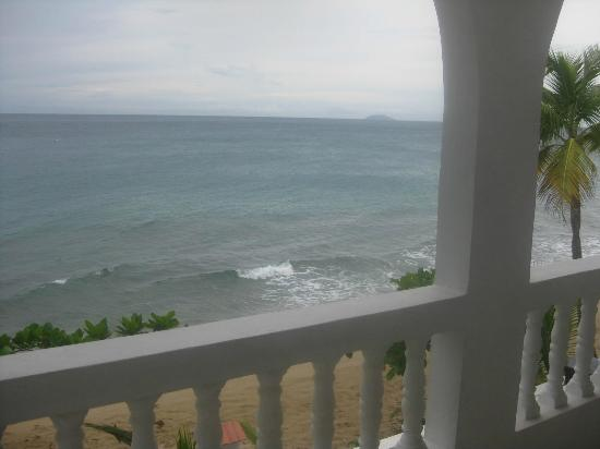 Coconut Palms Inn: View from room