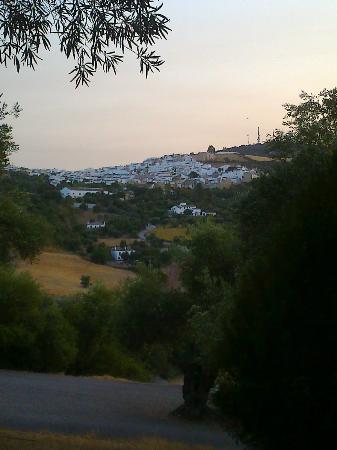 Cortijo Huerta Dorotea: vista desde la terraza de la cabaña