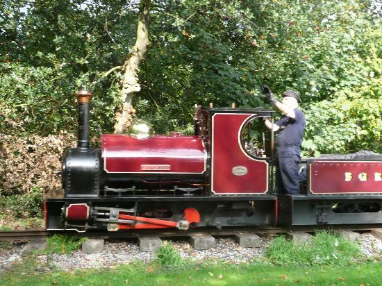 garden train at bressingham Picture of Bressingham Steam Museum