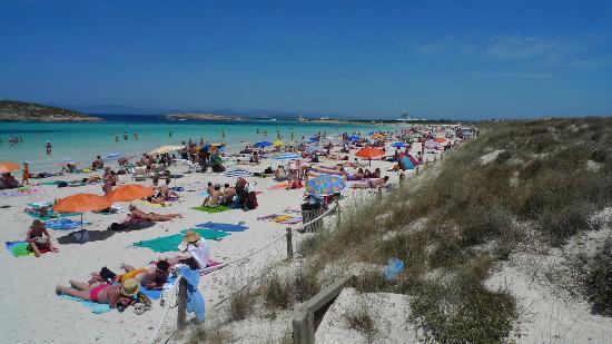 Strand Playa de ses Illetes: spiaggia ore 13 giugno pensate luglio o agosto