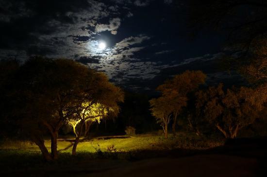 Epako Game Lodge: Point d'eau au clair de lune
