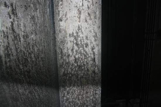 Diagonal Home: La vue sur le moisie de la fenetre cassée de la cuisine
