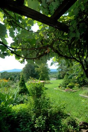 Chateau and Tudor Rooms, Saugerties Bed and Breakfast: Catskill Vines