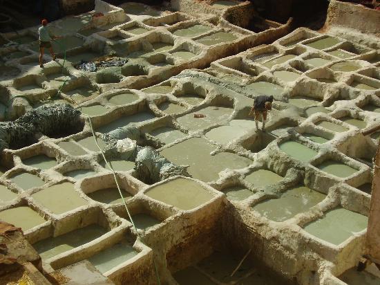 Moulay Abdellah Quarter: vasche viste dall'alto