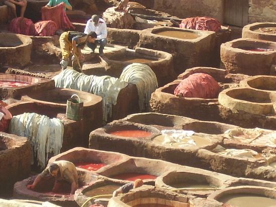 Moulay Abdellah Quarter: le vasche per la conciatura