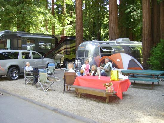 Santa Cruz Redwoods RV Resort: Family, kid and doggy friendly!