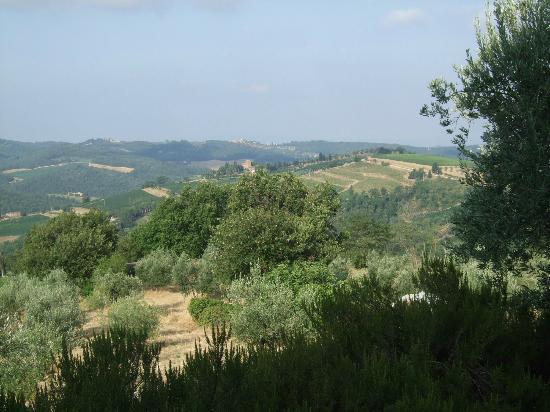 Agriturismo Cecione: vue de la terrasse