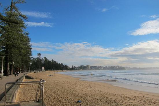 The Sebel Manly Beach: ホテル前のビーチです。サーフィン好きにはたまらない立地では?