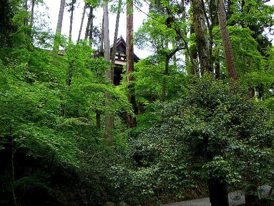 Otsu, Japan: Glimpse of the main temple building