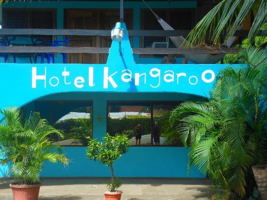 Hotel Kangaroo: front door 