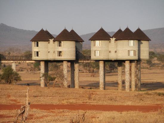 Sarova Salt Lick Game Lodge: A Village On Stilts