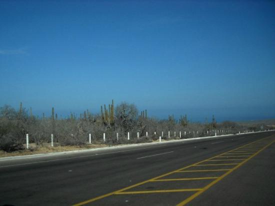 Marina Fiesta Resort & Spa: HACIA TODO SANTOS