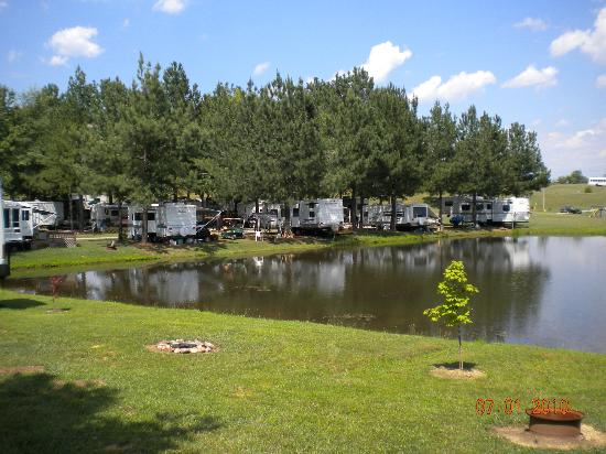 Beechnut Campground: Campsites