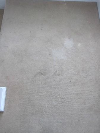 Hometel on Signal Hill: stained dirty carpets everywhere