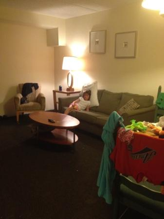 Oceanview Motel: living room sofa. basically springs with a light covering. even my 6 year old could not sleep on