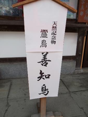 Utou Jinja: 善知鳥