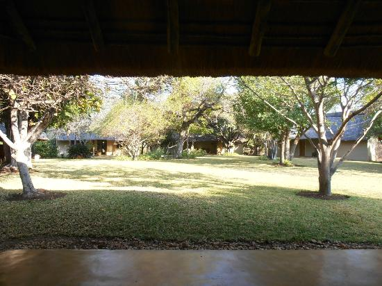Kwenga Safari Lodge: vies from door to our room