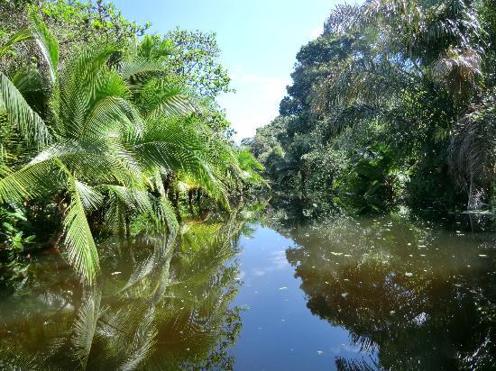 Come Tumi Lodge: Mon grove tocht met Kayak