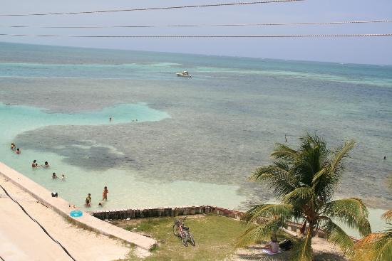 Caye Caulker Condos: View from the rooftop terrace of safe swimming area