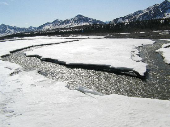 Teklanika River '04