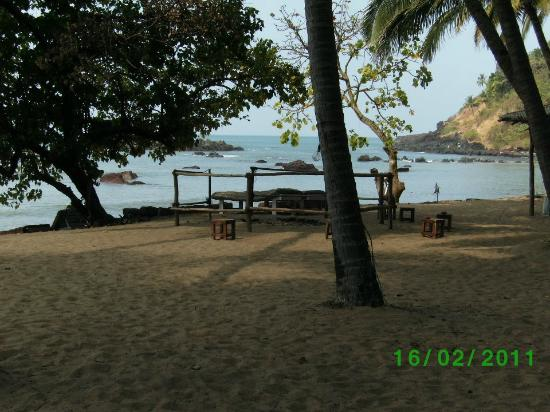 Cola Beach Exclusive Tented Resort: View from tent