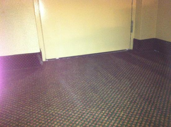 Best Western Celebration Inn & Suites: Bring the Raid and mouse traps! Gaps under the door!