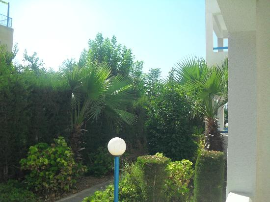 Kefalonitis Hotel Apts.: view from outside balcony, ground floor