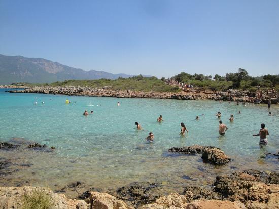 Cleopatra Island: sea by beach