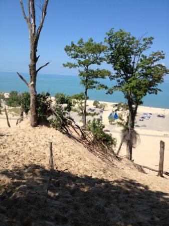Warren Dunes State Park: view of the beach from the top if a dune