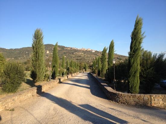 Relais Villa Baldelli: oprit villa baldelli