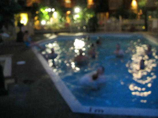 Vernon Atrium Hotel and Conference Centre: blurrey pool at nite